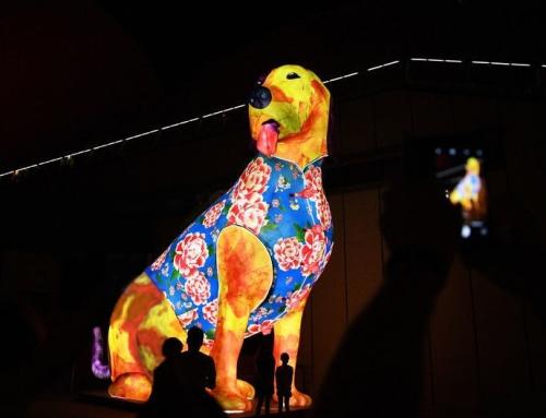 Астрологический прогноз на 2018 год Земляной Желтой Собаки